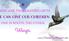 Toxic Mama Toxic Home: How to Reduce Reaction and Give Your Children Wings