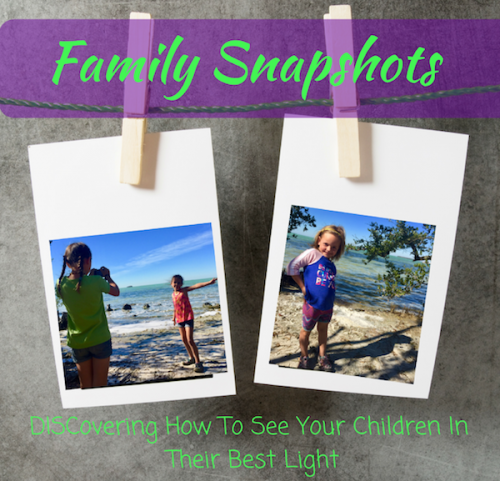 Family Snapshots DISC Personality Profile eBook family personality styles