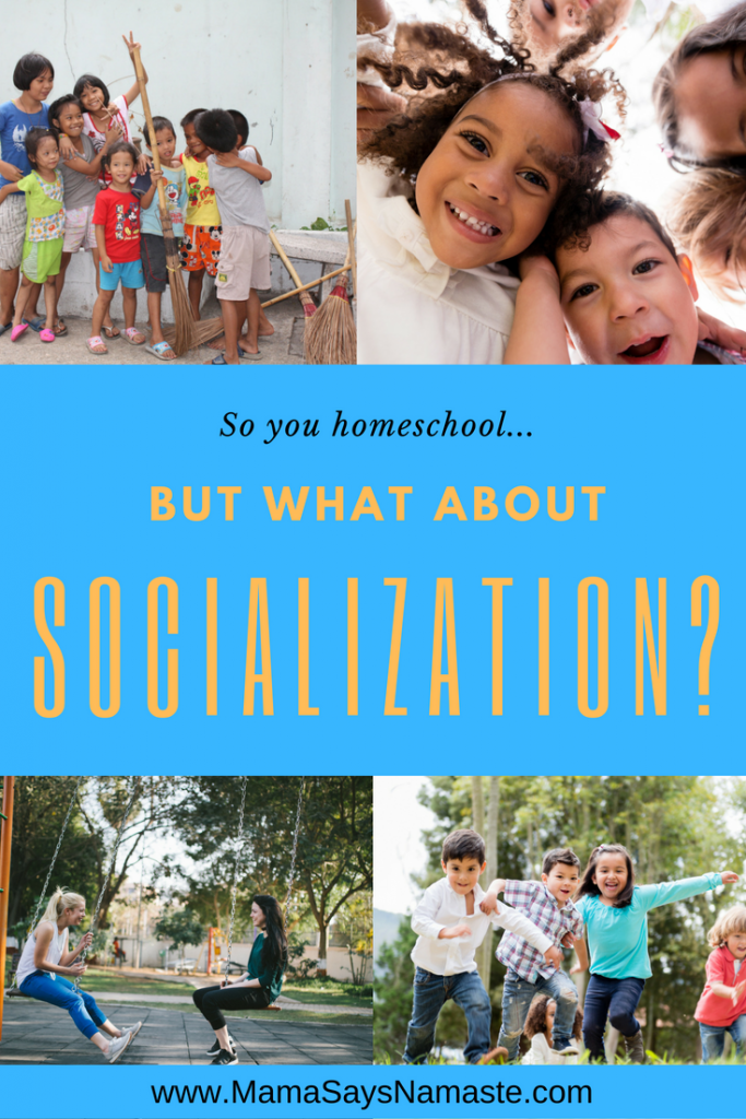 homeschoolers socialization