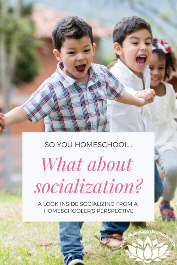 socialization homeschoolers